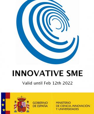 Pyme Innovadora Meic EN Web